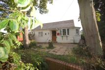 3 bed Detached Bungalow for sale in Sunbury Court Island...