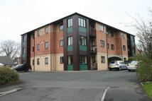 Apartment to rent in Williams Park...
