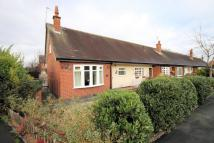 Bungalow to rent in Oldfield Drive, Mobberley