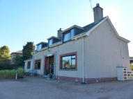 property for sale in Morangie B&B, Morangie Road, Tain, Ross-Shire, IV19 1PY