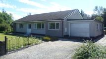 Detached Bungalow in Rowanbank Kildary...