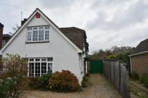 5 bedroom Detached property to rent in Hazeldean Drive...