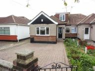 3 bedroom semi detached house to rent in Hilary Crescent, Rayleigh