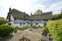 Detached property for sale in Great Hormead...