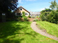 Detached Bungalow to rent in Bates Lane...