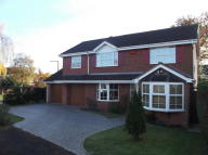 Detached house to rent in Farnborough Drive...