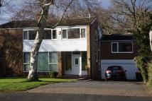 Detached property to rent in Birch Tree Ave, Solihull