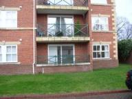 Apartment to rent in 88 Gibside House, Benton