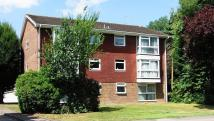 2 bed Flat in Copperfield Court...