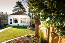 1 bedroom Bungalow to rent in Sycamore Walk...