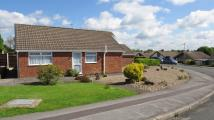 2 bedroom Detached Bungalow for sale in Ashover Road, Inkersall