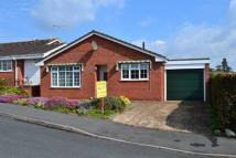 Detached Bungalow for sale in Herbert Road, Leominster