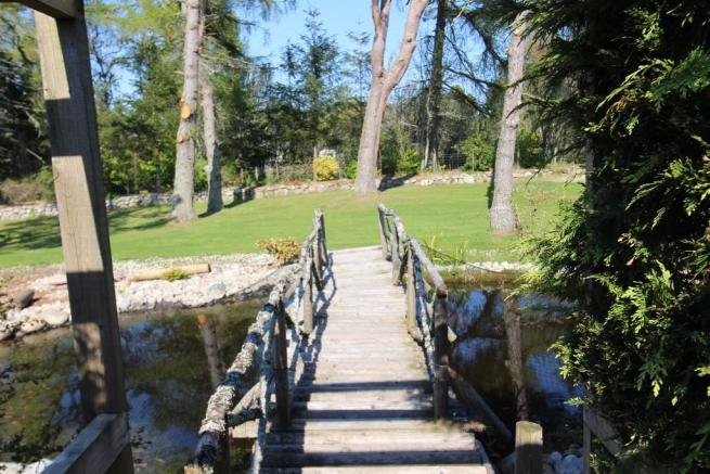 Bridge/pond