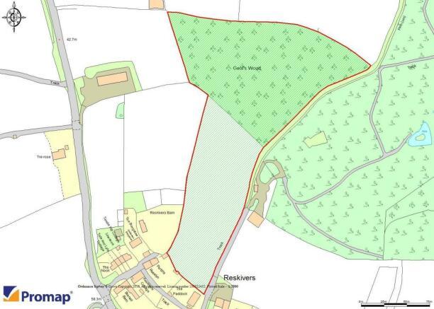 Reskivers Field and Woods.jpg