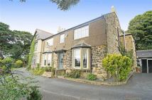 6 bedroom semi detached house in Sunniside East...