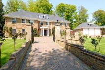 Detached house to rent in Kier Park, Ascot, SL5