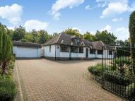 Detached property for sale in London Road, Bagshot...