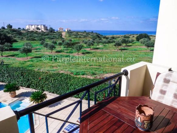 Views to the Olive fields and the sea