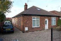 Bungalow in Knightthorpe Drive...