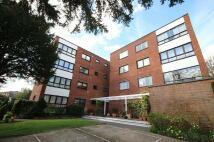 Flat to rent in Beaulieu Court...