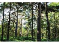 property for sale in Kinloch Rannoch, Perth & Kinross