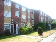 Flat to rent in Orchid Court...