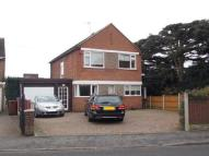 Detached house to rent in Wilsthorpe Road...