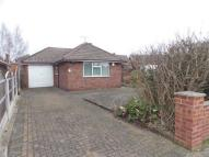 Detached Bungalow to rent in Sterndale Road...