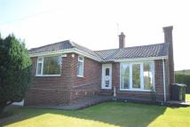 Detached Bungalow for sale in Well Lane, Weaverham...