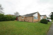 Detached property in Ramsey Close, IPSWICH...