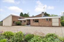 Detached Bungalow for sale in Barrow Lane...