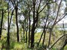 property for sale in 24-26 Timothy Street, MACLEAY ISLAND 4184