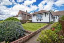 Semi-Detached Bungalow to rent in Westfield Avenue, ...