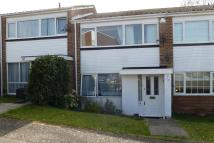 3 bed Terraced house to rent in Osward, Courtwood Lane...