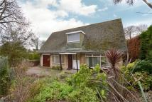 4 bedroom Detached property in Ventnor, Isle Of Wight