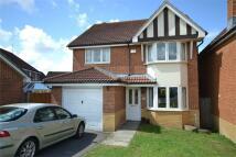 Newport Detached house for sale