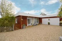 Detached Bungalow for sale in Ventnor, Isle of Wight