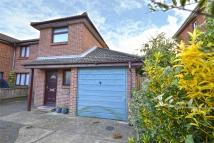 3 bedroom semi detached home in Newport, Isle Of Wight