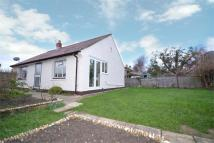 2 bedroom Detached Bungalow for sale in Freshwater, Isle Of Wight