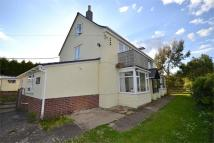 Detached property in Newport, Isle Of Wight