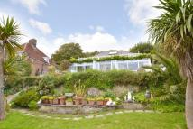 2 bed Detached Bungalow for sale in Ventnor, Isle Of Wight