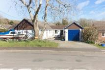Detached Bungalow for sale in Brighstone, Isle Of Wight