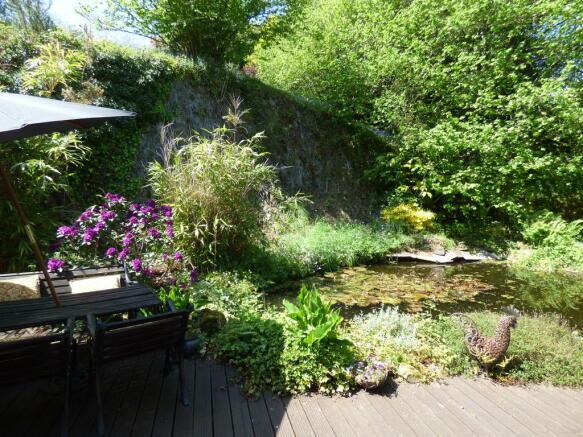 Pond from Kitchen