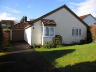 3 bedroom Bungalow to rent in Becket Road...
