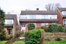 1 bed Flat in Wharncliffe Road...
