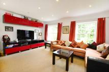 property in Crystal Palace Park Road...