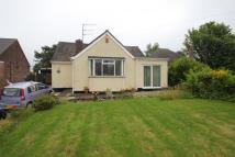 Bungalow in Knypersley Road, Norton...