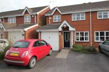 3 bedroom semi detached house to rent in Hyssop Place, Norton...