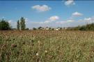 Aurignac Land