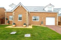 6 bed Detached Bungalow for sale in Eleanors Way...